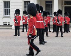 Img554952nx2 (veryamateurish) Tags: unitedkingdom british military army london wellingtonbarracks changingoftheguard publicduties ceremonial guardmounting newguard footguards householddivision grenadierguards