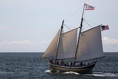 CN4A1124 - Fame (Syed HJ) Tags: canoneos5dmarkiii canoneos5diii canon5diii canon 5d 5diii canonef70200mmf28lisiiusm canonef70200mmf28lisii canonef70200mmf28l canonef70200mm canon70200mm 70200mm schoonersfestival schoonersfestivalgloucesterma schooners boats sailboats gloucesterma gloucester ma