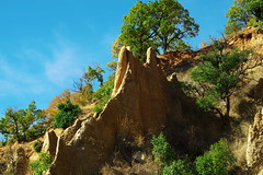 (sevdelinkata) Tags: outdoor landscape tree bulgaria sandy pyramids rila mountain