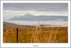 Queens View And Ben Lomond (flatfoot471) Tags: 2015 autumn benlomond dawn landscape mist normal queensview scotland stirlingshire stockiemuir unitedkingdom