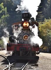 160925_18_felton (lmyers83) Tags: steam shay