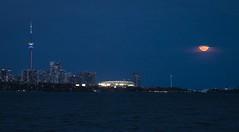 Toronto Super Moon (corybeatty) Tags: super moon city cityscape urban landscape toronto night buildings skyscrapers water ontario canada light colour sky lake