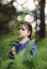 (Shannon Alexander Photography) Tags: vermontphotographer fineartphotographer fineartphotography childportrait childphotography ferns nature vermont canon canon135mmf2l