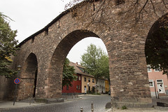 DSC00822 (michael40001) Tags: worms rheinlandpfalz deutschland tamron tamronspaf1750mmf28xrdiiildasphericalif dt1750mmf28 tamron1750mmf28 sony sonyalpha68 sonya68 ilca68 de