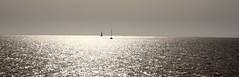 Horizont (AstridSusann) Tags: horizont schiffe meer gegenlicht urlaub test 2016 outdoor atlantik andalusien