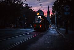 twenty (ewitsoe) Tags: tram poznan poland ewitsoe niikon dawn sunrise street urban city life rain train pedestrian commuter morning autumn nikond80 35mm