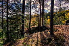 2016-10-14_8601.jpg (flyfast 70) Tags: cascades eau nature water feuillage automne fall rivire photographie trees foto fort river forest photography lake colors couleurs chte madeleinepunde stcme arbres stcme chte fort rivire madeleinepunde