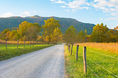 Sunrise at Sparks Lane (APGougePhotography) Tags: fall colors sparks lane cades cove gsmnp national park mountains great smoky smokymountains tennessee sunrise golden nikon adobe adobelightroom lightroom nikond800 d800