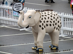 I Follow A Different Herd by Creative In Crystal, Herd of Sheffield Farewell Weekend 2016 (Dave_Johnson) Tags: meadowhall carpark shoppingcentre ifollowadifferentherd creativeincrystal giraffe herdofsheffield herd elephant elephants art streetart sculpture sheffchildrens sheffieldchildrenshospitalcharity sheffieldchildrenshospital childrenshospitalcharity childrenshospital sheffield southyorkshire