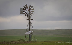Out with the Old - In with the New. (Turk Images) Tags: windmill solartpanels prairiegrasslands pasture saskatchewan agriculture