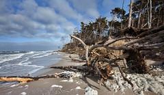 Am Weststrand , Darss (Burminordlicht) Tags: darss prerow weststrand strmisch stormy wellen brandung balticsea ostsee schaum gischt