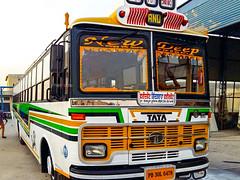 New Deep Bus Service (Malwa Bus) Tags: india punjab newdeepbusservice gidderbaha bus tatabus tata transport busservice malwabus pb30l6478