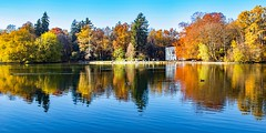 at the small lake (werner boehm *) Tags: wernerboehm pagodenburg fall autumn herbst spiegelung reflection nymphenburg