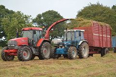 McCormick MTX120 Tractor with a JF FCT 800 Traiiler forage harvester filling a trailer drawn by a Ford 7810 Tractor (Shane Casey CK25) Tags: mccormick mtx120 tractor jf fct 800 traiiler forage harvester filling trailer drawn ford 7810 rathcormac red blue silage silage16 silage2016 grass grass16 grass2016 winter feed fodder county cork ireland irish farm farmer farming agri agriculture contractor field ground soil earth cows cattle work working horse power horsepower hp pull pulling cut cutting crop lifting machine machinery nikon d7100 argo
