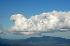 Mt Jerusalem (dustaway) Tags: sea mountain nature clouds landscape countryside scenery day cloudy australia cumulus nsw cloudscape northcoast northernrivers nightcaprange nationalparksandnaturereserves
