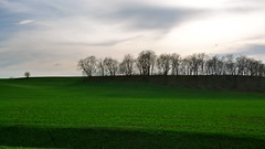 green acres (LeicaNokota) Tags: leica trees sunset shadow sky usa color green silhouette clouds landscape spring cloudy farm vibrant horizon hill deep iowa crop land farmer acres treeline fertile greenacres dlux4 fieldag