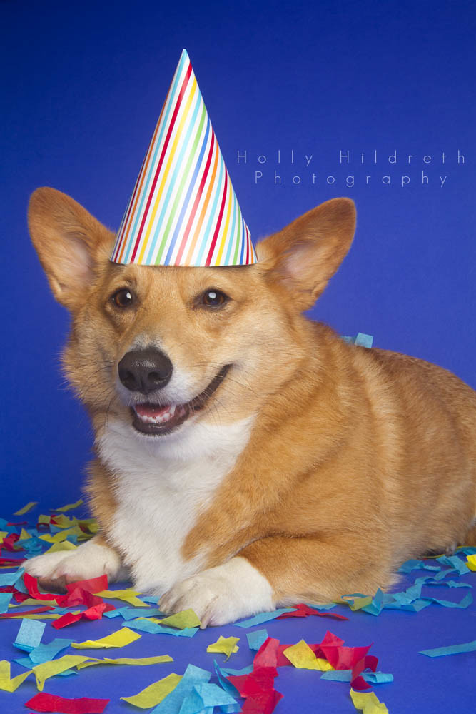 The World's most recently posted photos of birthday and