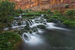 The Canyon Spirit - Arizonam USA (Thomas J Dawson) Tags: havasu havasupai arizonacanyon thomasdawsonphotography