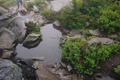 IMG_4166.jpg (Backpacking With Bacon) Tags: washington northerncascades hiking mtpilchuck granitefalls unitedstates us