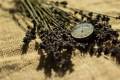 Lavender Time (L Harmer Photography) Tags: lavender pocket watch straw bag light contrast l harmer photography canon 760d eos dslr macro close up