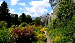 Bodnant (Peter.S.Roberts) Tags: flowers trees summer people plants mountains hot colour detail nature public floral beautiful gardens wales fauna clouds landscape interestingness interesting flora flickr cymru victorian property peaceful sunny bluesky historic greenery walkways colourful lovely seating nationaltrust shrubs tranquil conwy bodnant plantlife shrubbery orangery historichouse historicgardens carneddau bodnantgardens conwyvalley walledgardens peterroberts talycafn aberconwy bodnanthouse nikond7000 victorianwalledgardens ladyaberconwy