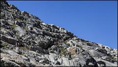 _SG_2016_08_9024_IMG_2773 (_SG_) Tags: schweiz suisse mountain peaks berg berge bergmassiv natur nature landschaft landscape sky himmel mountainpeak mountainpeaks rock fels rocks felsen bahn railway aletsch glacier gletscher unesco weltkulturerbe hiking wandern outdoor wallis aletschgletscher bettmeralp fiescheralp valais world heritage