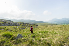 At the foot of Snowdon (Ricky Reardon) Tags: r rhyd ddu path snowdon hiking walking backpacker countryside snowdonia national park three peaks challenge sunny clear views long grass male uk wales north trail adventure off beaten track paraglider
