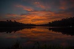 Durham's Lake Sunrise - 082816-063400 (Glenn Anderson.) Tags: morning sunrise down solor tree lake pond water reflection ripples nature color sun park nikon tamron min outdoor dawn