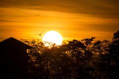 Atardecer desde La Lomita (Jos M. Arboleda) Tags: atardecer sunset sol cielo nube cloud popayn colombia canon eos 5d markiii tamron sp150600mmf563divcusda011 jose arboleda josmarboledac