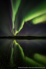 Aurora Reflection (David Swindler (ActionPhotoTours.com)) Tags: reflection auroraborealis northernlights denali denalihighway aurora alaska