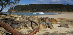 Driftwood (2) (OzzRod) Tags: supertakumar28mmf35 panorama coast beach driftwood barraggabay k5 pentax