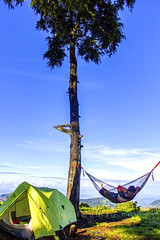 Relaxed man and lying in a comfortable hammock (sydeen) Tags: hammock man guy net male summer relaxed enjoying relaxation one rest lying swinging lifestyle young person resting joy looking comfortable swing single tranquil vacation tree blue sky tent outdoor highland shadow cloud green hang