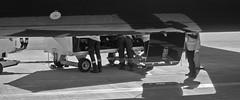 baggage handlers (Bernal Saborio G. (berkuspic)) Tags: baggagehandlers airplane aircraft swissport airport travel airportworkers luggage