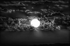 When the sun rises 59 (Abd-Elilah Ouassif) Tags: ciel nuages soleil aube leverdujour maroc extrieur matin lumire paysage calme horizon monochrome cloudy dawn sun sunrise morocco morning outside bw light calm landscape abdelilah ouassif nikon d7000 55300mmf4556gvr nikkor 2016
