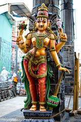 Moustache of Sarathi (Vijay Ram) Tags: yaali chariot rath vishnu chennai colorul parthasarathy temple mythical animal art architecture handmade artwork pallava chola photo border god nikon 35mm primelens