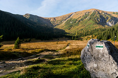W Dolinie Kondratowej (czargor) Tags: tatry nature mountians mountainside tatra mountains czerwone wierchy