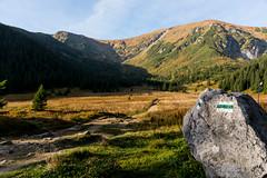 W Dolinie Kondratowej (czargor) Tags: tatry nature mountians mountainside tatra mountains czerwone wierchy