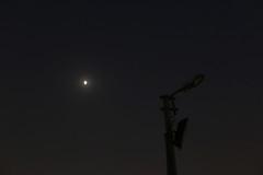 God Eats Egg White (Mayank Austen Soofi) Tags: delhi wlala moon night sky lamp power cut god eats egg white