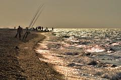 pescoso (pamo67) Tags: pamo67 fishy controluce backlight dorato gold mare sea pescatori fishermen riva shore spiaggia beach estate summer pasqualemozzillo