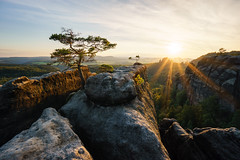 Des Knigs Krone - The Kings Crown (Philipp Zieger - www.philippzieger-photographie.de) Tags: sonnenuntergang schsischeschweiz landscape schmilka lehnsteig landschaft saxonyswitzerland rocks rauschenstein elbsandsteingebirge deutschland germany sunset wlder forest natur nature outdoor hiking chasinglight sony a6000 sel10184