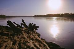 The great Missouri (Jennifer Steere) Tags: missouri river wilton