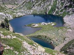 (100) (Mark Konick) Tags: italy italie italia italien france francia frankreich alpen alpes alpi alps backpacking bergsee bergtour bergwandern bivouac gebirge hiking lac lago lake markkonick montagnes mountains nathaliedeligeon randonne trekking wandern bouquetin ibex cabramonts stambecco steinbock chamois camoscio gamuza rebeco gams gmse gemse gmsbock gemsbock vacas khe mucche vacche cows cascade chutedeau waterfall wasserfall cascata cascada saltodeagua