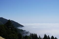 Mount Tamalpais: Rock Spring to Stinson Beach Hike (6) (Planet Q) Tags: mttam marinheadlands