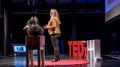 TedX HHL 2016