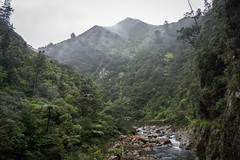 Karangahake Historical Walk-7-2