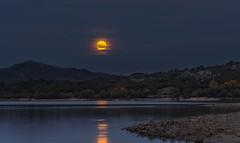 Luna llena. (Amparo Hervella) Tags: manzanareselreal comunidaddemadrid espaa spain luna moon paisaje landscape agua water reflejo reflection noche nocturna night d7000 nikon nikond7000 wewanttobefree