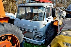 Alfa romeo saviem A19N (riccardo nassisi) Tags: car wreck rust rusty relitto rottame ruggine ruins scrap scrapyard sfascio sfasciacarrozze epave escavatore excavator hydromac abbandonata abbandonato abandoned auto