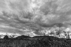 Lomonds BW (RagbagPhotography) Tags: west lomond bishop bishops hill loch leven fife perth kinross scotland black white mono monochrome