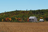 An old barn in Quyon, Québec (Ullysses) Tags: quyon québec canada autumn automne farm ferme fallcolors municipalityofpontiac pontiac northonslow