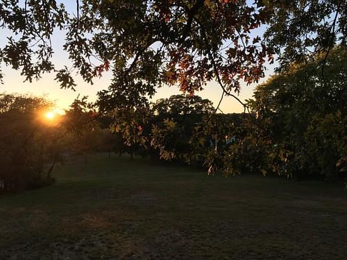Earlier & earlier each day the #sun goes down! :) #park #naturephotography #sunsets #secretgarden #sundown #autumn🍁 #trees